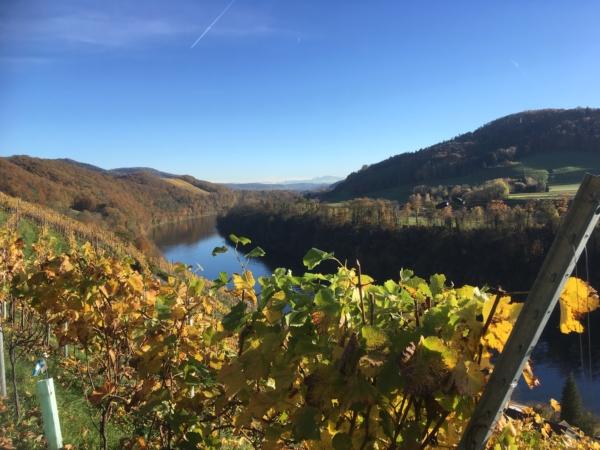 Eglisau - Bechtel